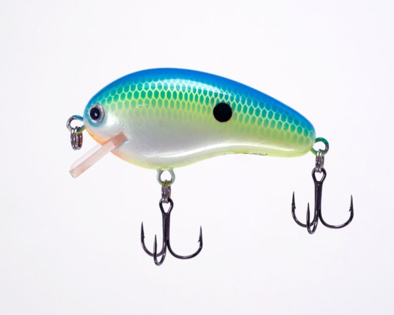 Citrus Shad Side View